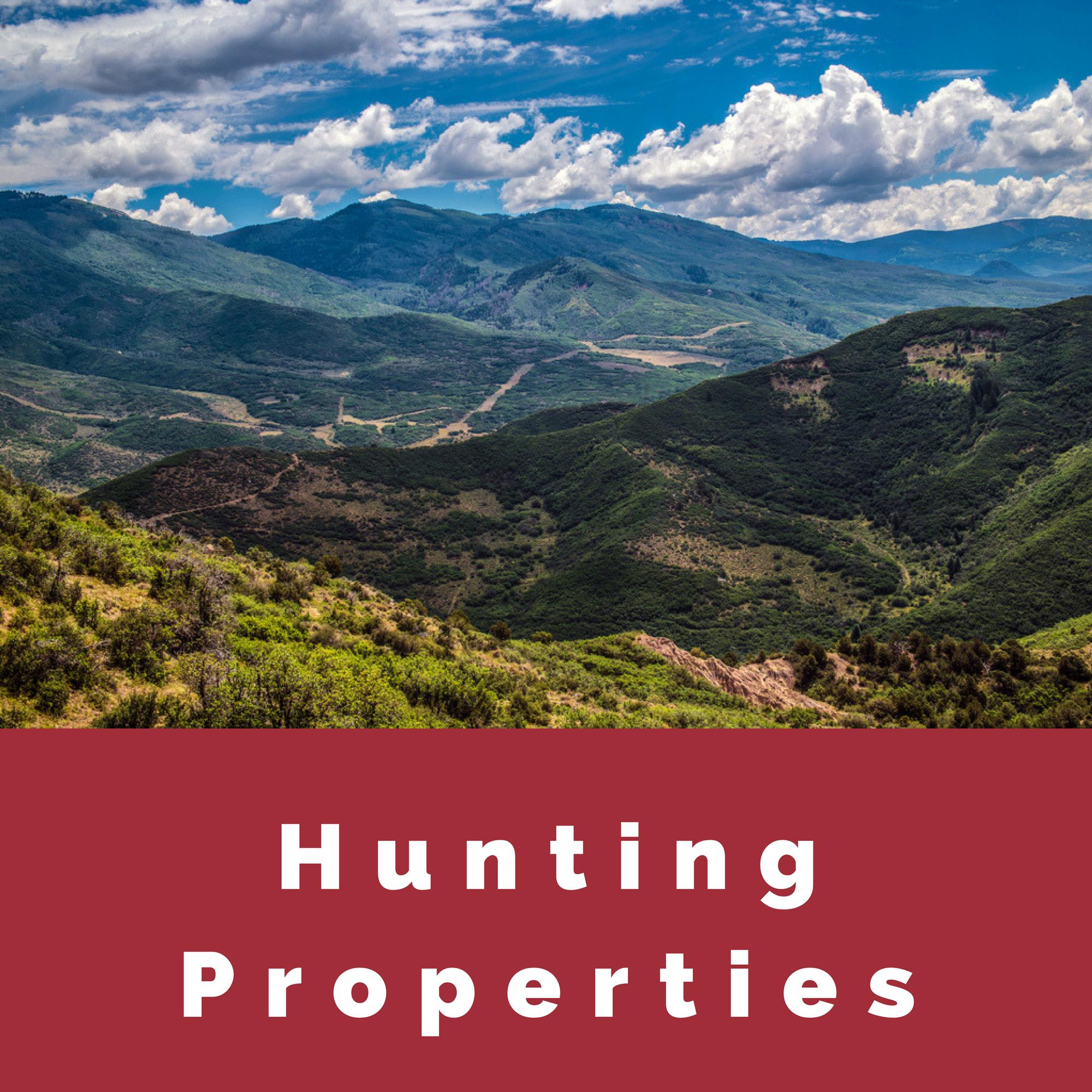 Hunting Properties