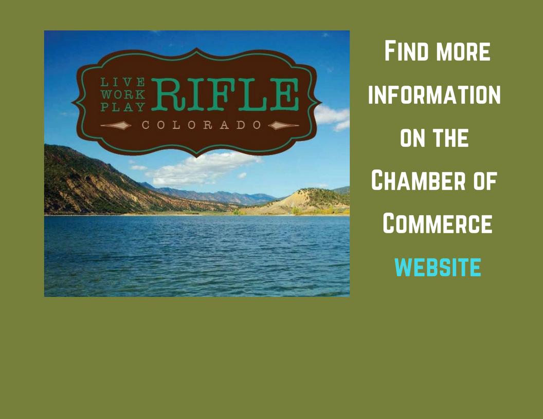 Rifle brochure Chamber