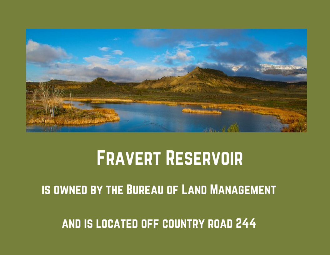 Rifle brochure Fravert Reservoi