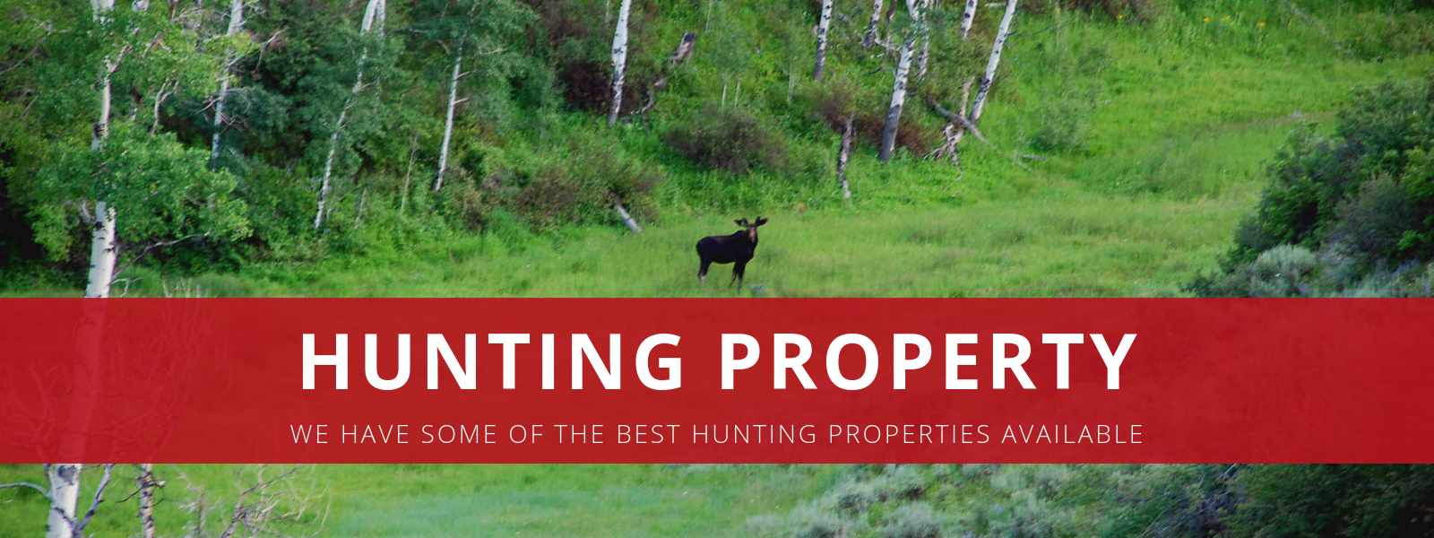 Hunting Properties